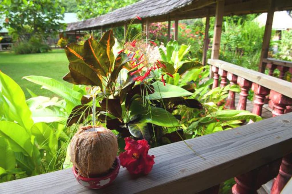 Tahiti Beach House Moorea Asia Pacifc Yoga Teacher Training