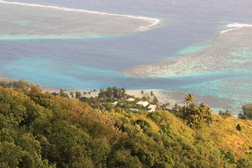 Tahiti Beach House Moorea Asia Pacifc Yoga Teacher Training